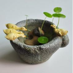 真自在原创铜钱草花盆创意多肉鸭子仿石臼小动物水培摆件个性装饰