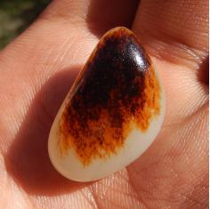 方言和田玉特惠仅仅32600元收藏级玉石聚黑红皮羊脂白玉籽料戒面
