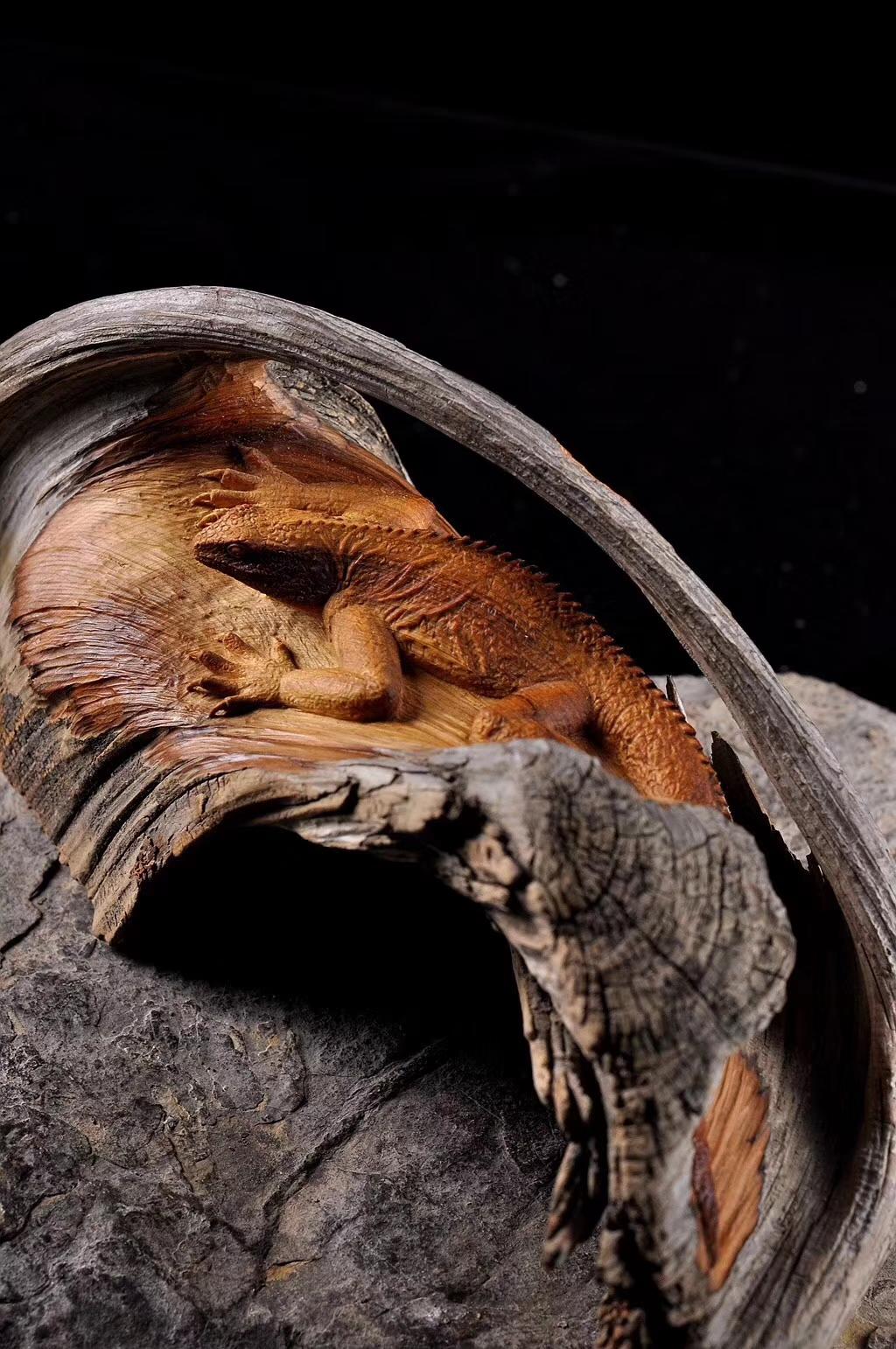 【精品】好一只蜥蜴(吸亿),刻画入微,细到血管,微至皮毛。细节决定品质,什么是细节,细节是用高超的技艺和时间的堆积组成的。